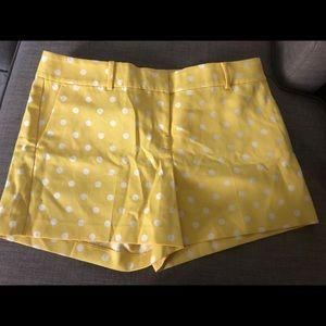 Ann Taylor Polka Dot Short - Size 12